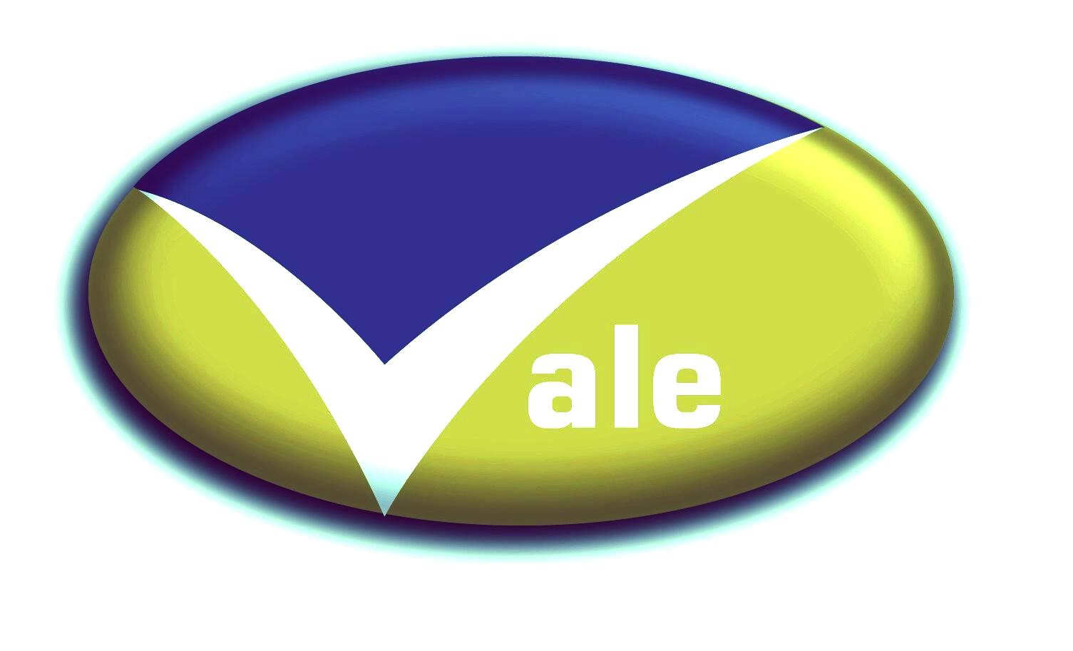 Vale Security Solutions Logo